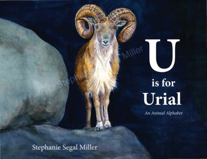 U-is-for-Urial-Stephanie-Segal-Miller-ISBN 9781733234818