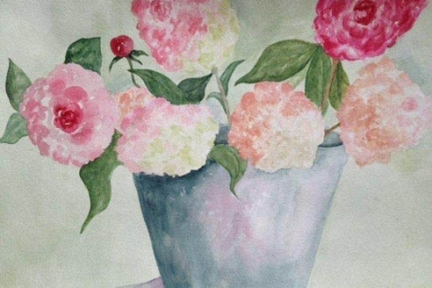 10-Peonies watercolor Stephanie Segal Miller