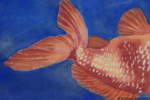 Fish watercolor