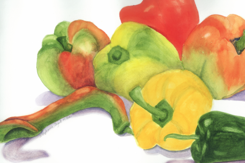Peppers watercolor Stephanie Segal Miller